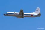 triton@blueさんが、米子空港で撮影した航空自衛隊 YS-11-103Pの航空フォト(写真)