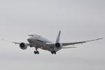 空飛ぶティラミスさんが、シドニー国際空港で撮影した全日空 787-9の航空フォト(写真)