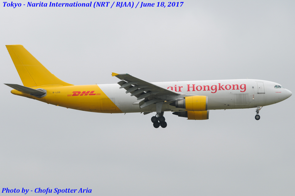Chofu Spotter Ariaさんのエアー・ホンコン Airbus A300-600 (B-LDD) 航空フォト