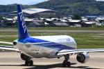 おみずさんが、高知空港で撮影した全日空 A320-211の航空フォト(写真)