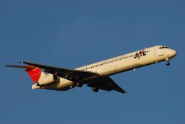 航空フォト:JA003D 日本航空 MD-90