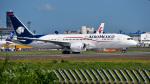 パンダさんが、成田国際空港で撮影したアエロメヒコ航空 787-8 Dreamlinerの航空フォト(写真)