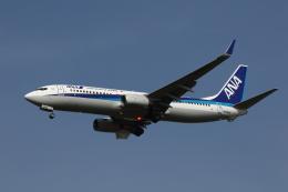 MOHICANさんが、福岡空港で撮影した全日空 737-881の航空フォト(飛行機 写真・画像)