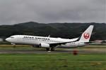 Gleimさんが、出雲空港で撮影した日本航空 737-846の航空フォト(写真)