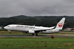Gleimさんが、出雲空港で撮影した日本航空 737-846の航空フォト(飛行機 写真・画像)