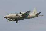 じゃりんこさんが、岐阜基地で撮影した海上自衛隊 P-3Cの航空フォト(写真)