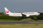 みなかもさんが、成田国際空港で撮影した日本航空 737-846の航空フォト(写真)