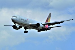 yoshibouさんが、成田国際空港で撮影したアシアナ航空 767-38EF/ERの航空フォト(写真)