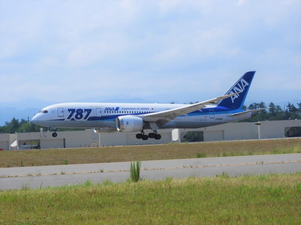 おっつんさんの全日空 Boeing 787-8 Dreamliner (JA810A) 航空フォト