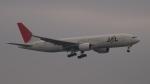 SVMさんが、羽田空港で撮影した日本航空 777-246の航空フォト(写真)