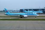 Fuseyaさんが、仁川国際空港で撮影した大韓航空 787-9の航空フォト(写真)