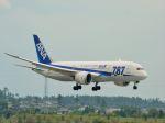 ナナオさんが、米子空港で撮影した全日空 787-8 Dreamlinerの航空フォト(飛行機 写真・画像)