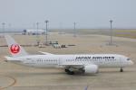 じゃりんこさんが、中部国際空港で撮影した日本航空 787-8 Dreamlinerの航空フォト(写真)