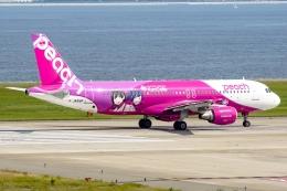 関西国際空港 - Kansai International Airport [KIX/RJBB]で撮影されたピーチ - Peach [MM/APJ]の航空機写真