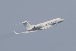 キイロイトリさんが、羽田空港で撮影したメキシコ企業所有 G-V-SP Gulfstream G550の航空フォト(飛行機 写真・画像)