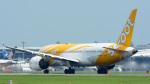パンダさんが、成田国際空港で撮影したスクート (〜2017) 787-8 Dreamlinerの航空フォト(飛行機 写真・画像)