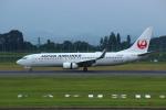 resocha747さんが、鹿児島空港で撮影した日本航空 737-846の航空フォト(写真)