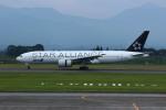 resocha747さんが、鹿児島空港で撮影した全日空 777-281の航空フォト(写真)