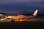 VEZEL 1500Xさんが、静岡空港で撮影したチャイナエアライン 737-8MAの航空フォト(写真)