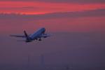 中部国際空港 - Chubu Centrair International Airport [NGO/RJGG]で撮影されたエア・カナダ・ルージュ - Air Canada rouge [RV/ROU]の航空機写真