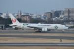 amagoさんが、伊丹空港で撮影した日本航空 777-246の航空フォト(写真)