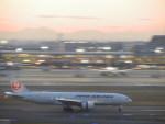まさ773さんが、羽田空港で撮影した日本航空 777-246の航空フォト(写真)