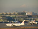 まさ773さんが、羽田空港で撮影した日本航空 777-246/ERの航空フォト(写真)