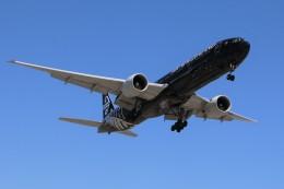 DREAMWINGさんが、ロサンゼルス国際空港で撮影したニュージーランド航空 777-319/ERの航空フォト(飛行機 写真・画像)