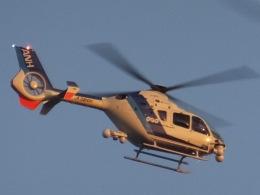 パピヨンさんが、東京ヘリポートで撮影したオールニッポンヘリコプター EC135T2の航空フォト(飛行機 写真・画像)