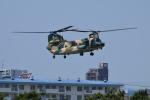 E-75さんが、函館駐屯地で撮影した航空自衛隊 CH-47J/LRの航空フォト(写真)
