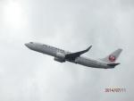 まさ773さんが、羽田空港で撮影した日本航空 737-846の航空フォト(写真)