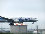 まさ773さんが、羽田空港で撮影した全日空 787-8 Dreamlinerの航空フォト(写真)