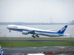 まさ773さんが、羽田空港で撮影した全日空 777-381/ERの航空フォト(写真)