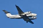 パンダさんが、羽田空港で撮影したノエビア B300の航空フォト(写真)