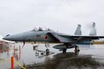kanadeさんが、新田原基地で撮影した航空自衛隊 F-15DJ Eagleの航空フォト(写真)