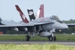 Valentinoさんが、茨城空港で撮影したアメリカ海兵隊 F/A-18C Hornetの航空フォト(写真)