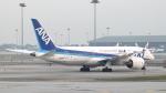 誘喜さんが、クアラルンプール国際空港で撮影した全日空 787-8 Dreamlinerの航空フォト(写真)