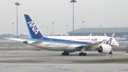 誘喜さんが、クアラルンプール国際空港で撮影した全日空 787-8 Dreamlinerの航空フォト(飛行機 写真・画像)