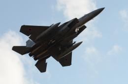 はみんぐばーどさんが、千歳基地で撮影した航空自衛隊 F-15J Eagleの航空フォト(飛行機 写真・画像)