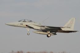 はみんぐばーどさんが、千歳基地で撮影した航空自衛隊 F-15DJ Eagleの航空フォト(飛行機 写真・画像)