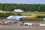 T.Sazenさんが、成田国際空港で撮影したバニラエア A320-216の航空フォト(写真)