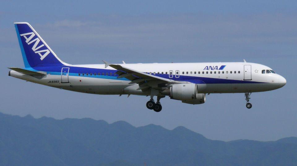 cathay451さんの全日空 Airbus A320 (JA8383) 航空フォト
