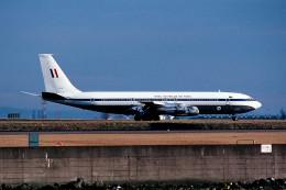 トロピカルさんが、羽田空港で撮影したオーストラリア空軍 707-338Cの航空フォト(飛行機 写真・画像)