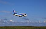 SKY KOCHIさんが、新石垣空港で撮影したANAウイングス 737-54Kの航空フォト(写真)