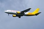 成田国際空港 - Narita International Airport [NRT/RJAA]で撮影されたエアー・ホンコン - Air Hong Kong [LD/AHK]の航空機写真