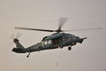 じゃりんこさんが、浜松基地で撮影した航空自衛隊 UH-60Jの航空フォト(写真)