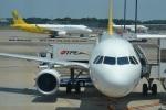hirokongさんが、成田国際空港で撮影したバニラエア A320-214の航空フォト(写真)