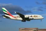 たっくさんが、成田国際空港で撮影したエミレーツ航空 A380-861の航空フォト(写真)