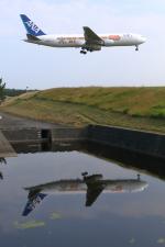 トリトンブルーSHIROさんが、庄内空港で撮影した全日空 767-381/ERの航空フォト(写真)