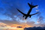 ちょっきんさんが、函館空港で撮影した全日空 787-8 Dreamlinerの航空フォト(写真)